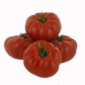 Tomate côtelée Marmande