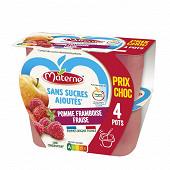Materne ssa pomme framboise fraise 4x100g prix choc