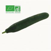 Concombre bio