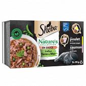 Sheba nature's collection barquettes coffret terre et mer en sauce 2 v