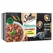 Sheba nature's collection barquettes coffret à la volaille en sauce 2