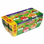 Andros dessert fruitier panaché 16x100g dont 4 offerts