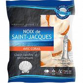 Hubco noix de Saint-Jacques avec corail Pérou 20/40 400g