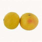 Pomelos bio star ruby barquette 2 fruits