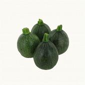 Courgette ronde bio barquette 3 fruits