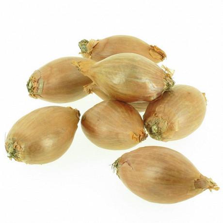 Royal saveur échalote traditionnel bio filet 250g