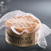 Camembert au lait de buflonne vivaldi 250g