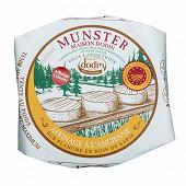 Munster aop dodin affinage à l'ancienne au lait de vache pasteurisé