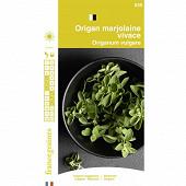 Francegraines Origan marjolaine vivace