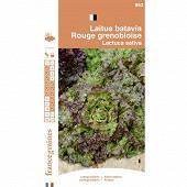 France graines laitue batavia rouge grenobloise