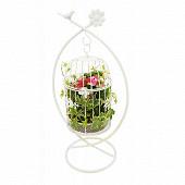 Composition plantes vertes et fleuries dans volière suspendue