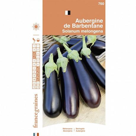 Francegraines Aubergine de Barbentane
