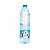 Saint amand eau mineral naturelle 1l pet