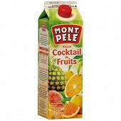 Mont-pele nectar cocktail 1l