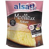 Alsa prêt à cuire préparation gâteau moelleux nature sachet 500g