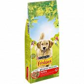 FRISKIES Vitafit Active Croquettes pour chien adulte au B?uf - 18 KG