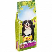 FRISKIES Croquettes pour chien adulte de plus de 25 kg Vitafit Maxi : au B?uf - 18 KG