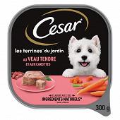 Cesar barquette veau carottes en terrine 300g