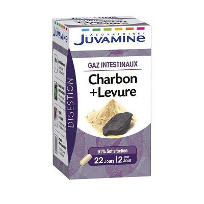 Juvamine Juvamine charbon + levure gaz intestinaux 45 gélules 15g