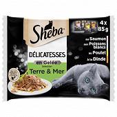 Sheba sachets fraicheur délicatesse en gelée select terre et mer pour chat