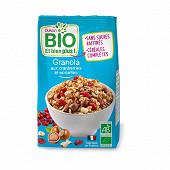 Dukan granola bio aux cranberries et noisettes 350g