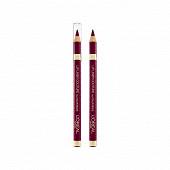 Color Riche lip liner contour des levres NU intense plum n°374 NU