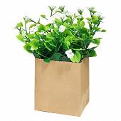 Déco végétal petite plante verte avec fleurs blanches dans pot kraft