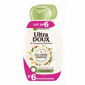 Ultra doux shampooing lait d'amande nourricier 250ml lot de 6