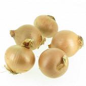 Oignon bio jaune filet 500g
