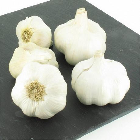 Ail blanc bio filet 3 têtes