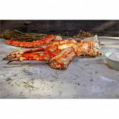 Pince king crabe décongelé