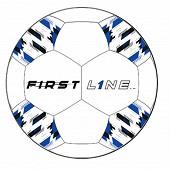 Ballon football noir et bleu T5
