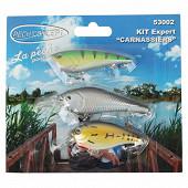Kit 3 poissons nageurs carnassiers