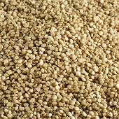 Juste bio quinoa blanc