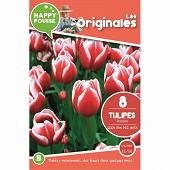 8 tulipe triomphe leen van der mark 11/12