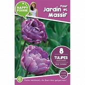8 tulipe double tardive blue diamond 11/12