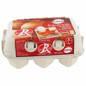 Cora 6 oeufs frais de poules élevées en plein air label rouge gros