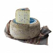 Bleu des basques lait pasteurisé brebis