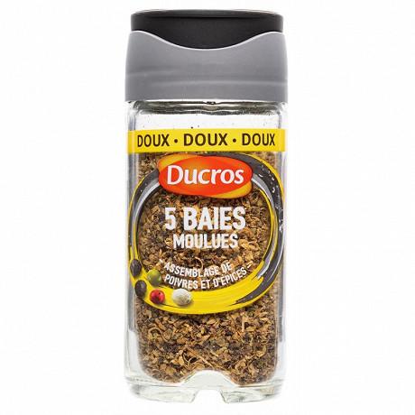 Ducros flacon mélange 5 baies moulues doux N°3  35g