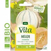 Vita Vilmorin melon charentais bio