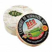 Réo camembert au lait cru AOP 22% mg 250g