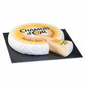 Chamois d'or lait pasteurisé de vache