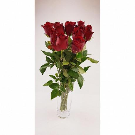 9 roses rouge 40 cm bouton 3.8 cm