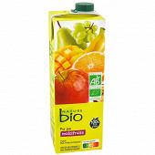 Nature bio pur jus multifruits brique 1l