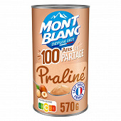Mont Blanc crème dessert au praliné 570g
