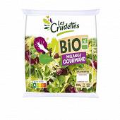 Les Crudettes salade mélange gourmand bio sachet 150g