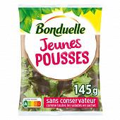 Bonduelle salade jeunes pousses sachet 145g