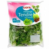 Cora salade mélange tendre sachet 125g