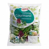 Cora salade mélange gourmand sachet 200g