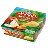Andros spécialité de pommes avec des morceaux à la cannelle 4x100g